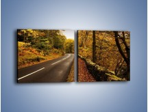 Obraz na płótnie – Asfaltową droga przez las – dwuczęściowy kwadratowy poziomy KN169