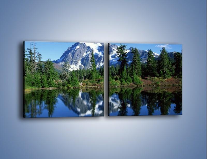 Obraz na płótnie – Zimowe pozostałości w górach – dwuczęściowy kwadratowy poziomy KN225