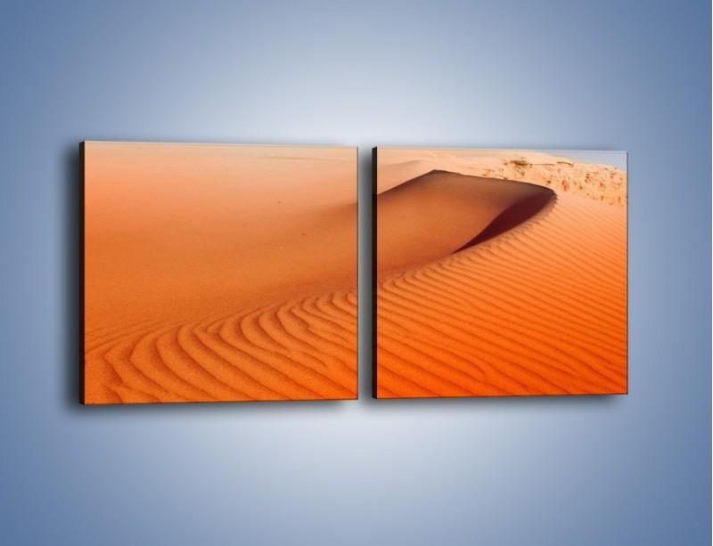 Obraz na płótnie – Pustynny żar – dwuczęściowy kwadratowy poziomy KN305