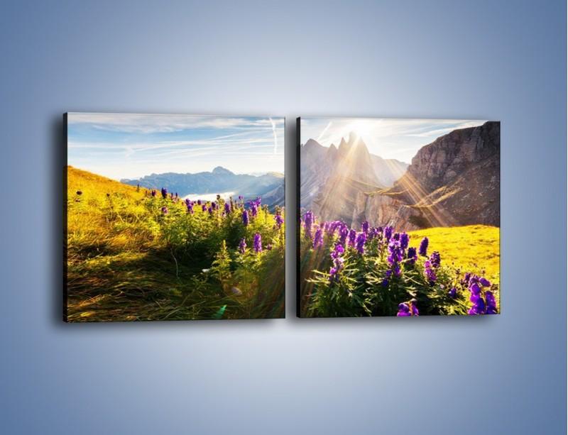 Obraz na płótnie – Góry w poświacie słońca – dwuczęściowy kwadratowy poziomy KN502