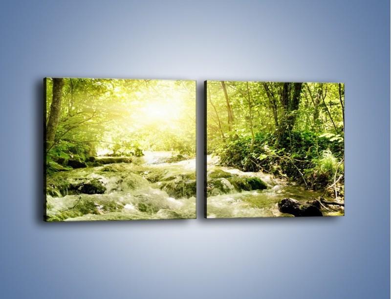Obraz na płótnie – Wzburzony potok leśny – dwuczęściowy kwadratowy poziomy KN508