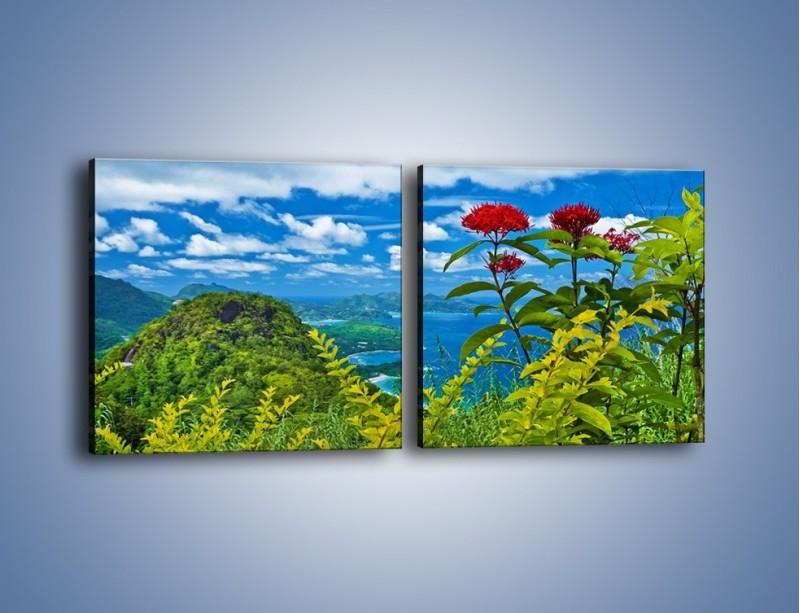 Obraz na płótnie – Bordowe kwiaty w górskim krajobrazie – dwuczęściowy kwadratowy poziomy KN561