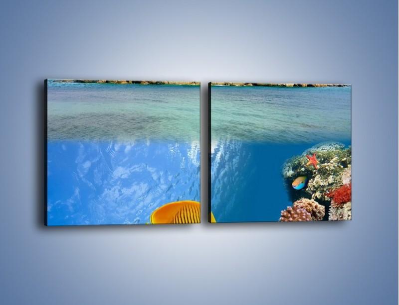 Obraz na płótnie – Podwodny świat na wyspie – dwuczęściowy kwadratowy poziomy KN586