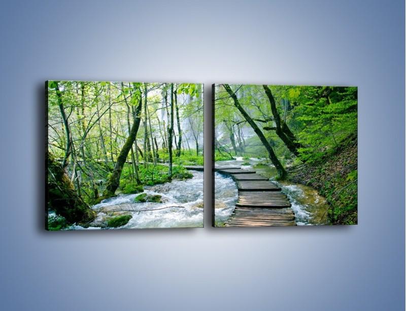 Obraz na płótnie – Drewniana kładką przez potok – dwuczęściowy kwadratowy poziomy KN720