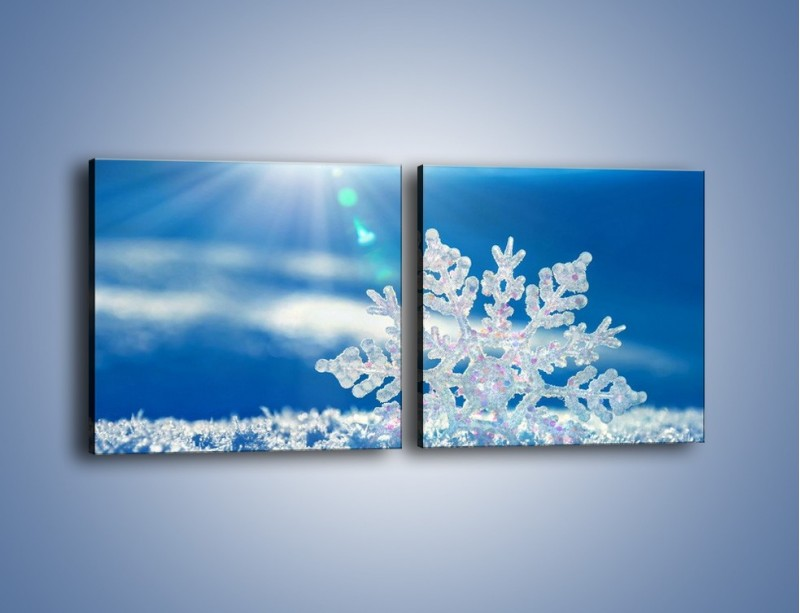 Obraz na płótnie – Diamentowa śnieżynka – dwuczęściowy kwadratowy poziomy KN808
