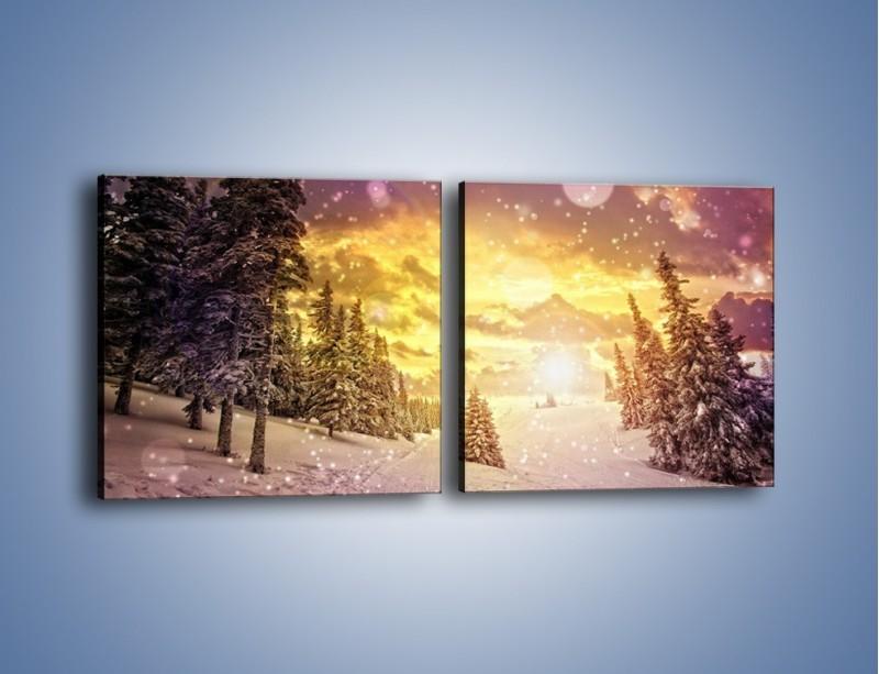 Obraz na płótnie – Śnieżna kraina – dwuczęściowy kwadratowy poziomy KN868