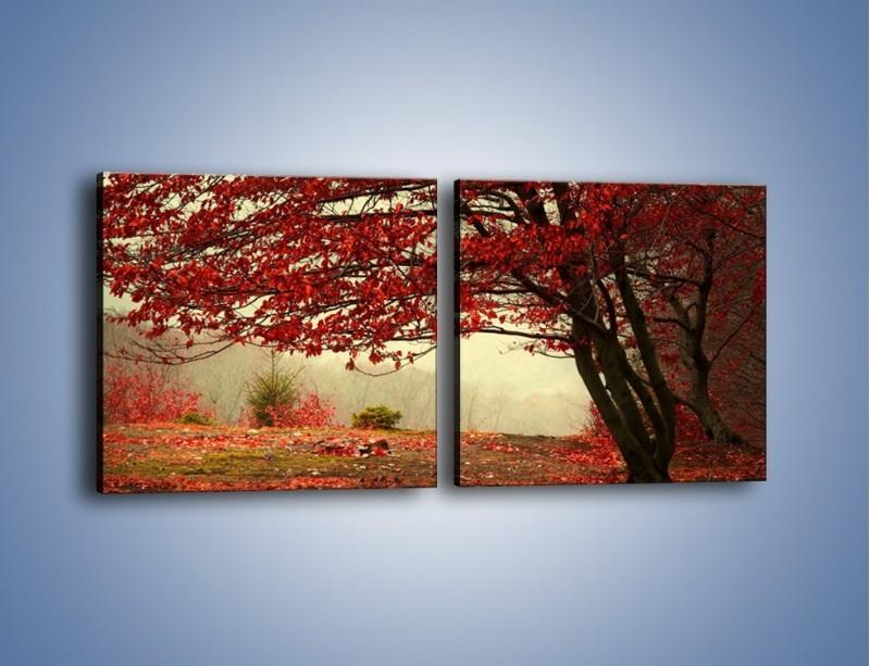 Obraz na płótnie – Spadające liście z drzew – dwuczęściowy kwadratowy poziomy KN910