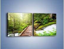 Obraz na płótnie – Bezpieczna droga przez las – dwuczęściowy kwadratowy poziomy KN922