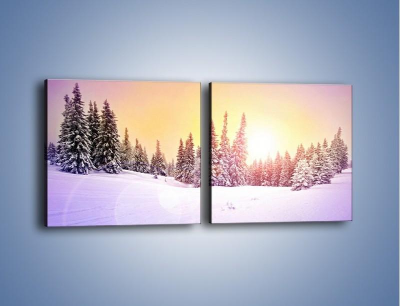 Obraz na płótnie – Choinki zatopione w śniegu – dwuczęściowy kwadratowy poziomy KN940