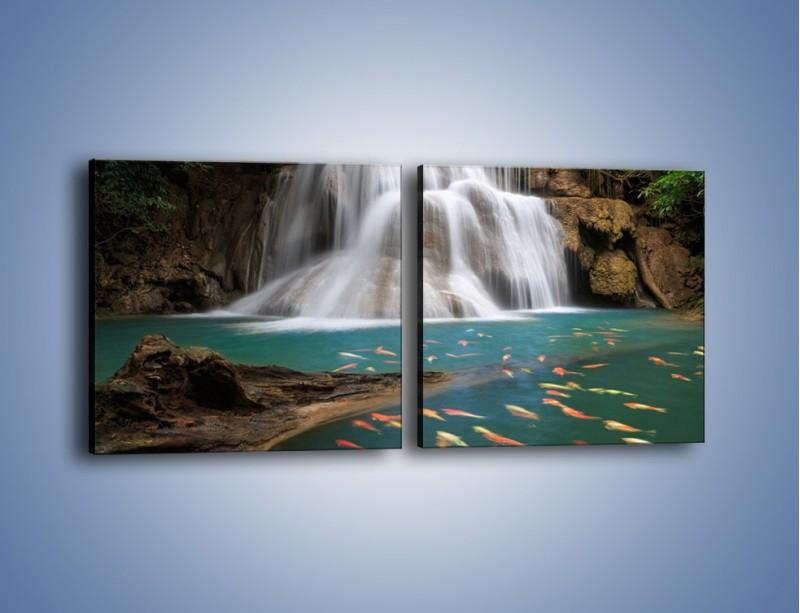 Obraz na płótnie – Wodospad i kolorowe rybki – dwuczęściowy kwadratowy poziomy KN994