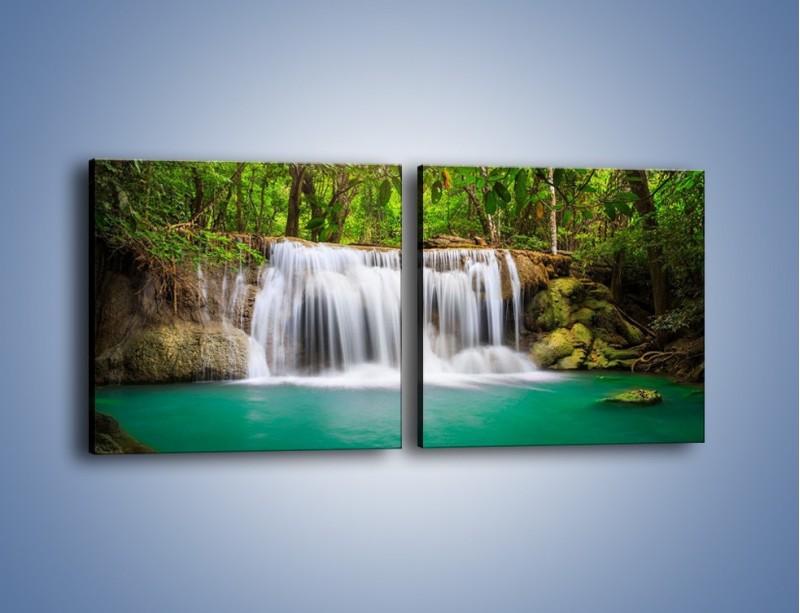 Obraz na płótnie – Kąpiel w środku lasu – dwuczęściowy kwadratowy poziomy KN995