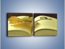 Obraz na płótnie – Liść na ciekawej powieści – dwuczęściowy kwadratowy poziomy O163