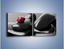 Obraz na płótnie – Czerwień wśród czarności – dwuczęściowy kwadratowy poziomy O212