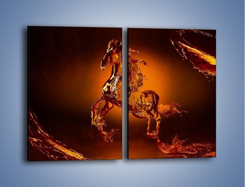 Obraz na płótnie – Wodny koń w mocnym świetle – dwuczęściowy prostokątny pionowy GR228