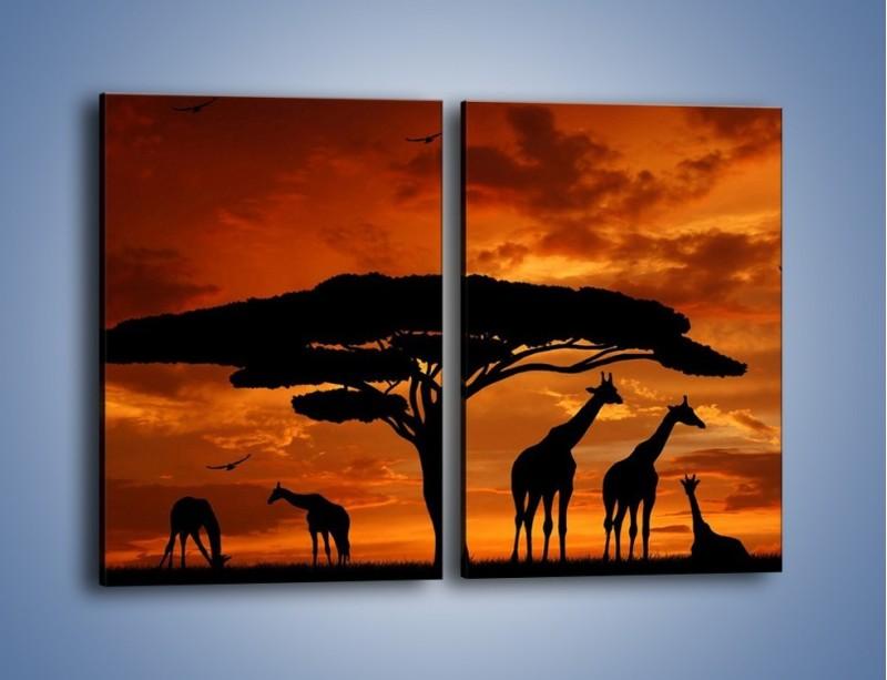 Obraz na płótnie – Żyrafy wieczorową porą – dwuczęściowy prostokątny pionowy GR266