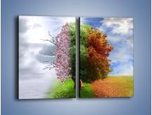 Obraz na płótnie – Cztery pory roku – dwuczęściowy prostokątny pionowy GR333