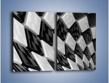 Obraz na płótnie – Czarne czy białe – dwuczęściowy prostokątny pionowy GR425