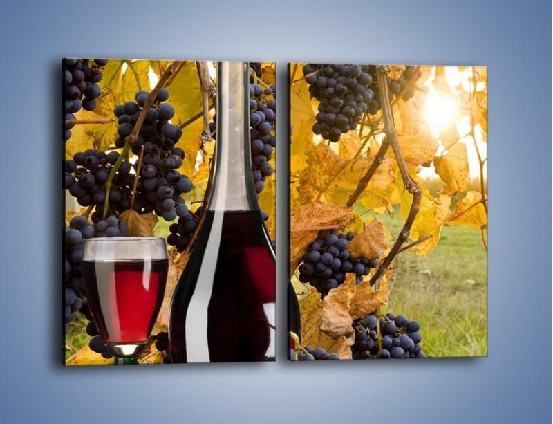 Obraz na płótnie – Wino wśród winogron – dwuczęściowy prostokątny pionowy JN007