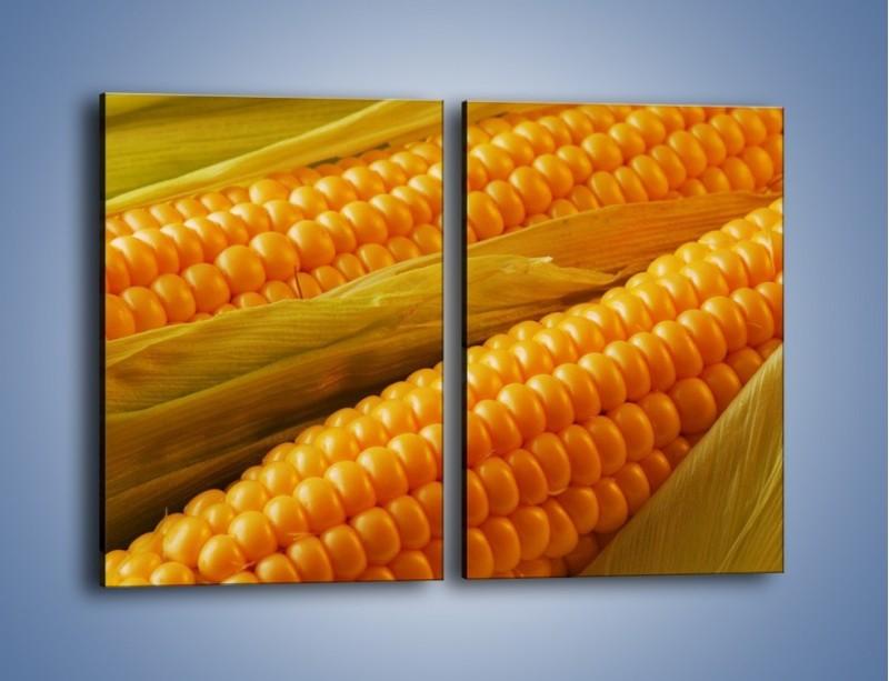 Obraz na płótnie – Kolby dojrzałych kukurydz – dwuczęściowy prostokątny pionowy JN046
