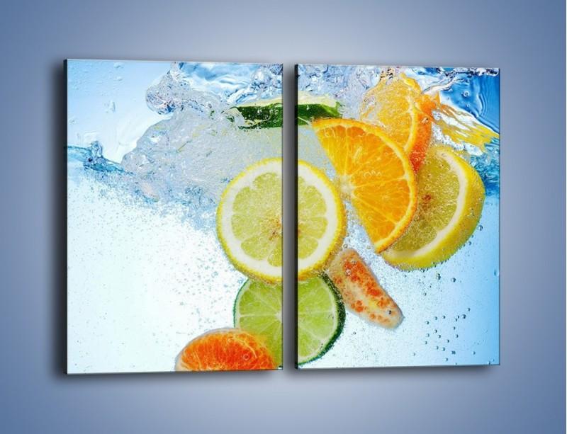 Obraz na płótnie – Zatopione plastry owoców – dwuczęściowy prostokątny pionowy JN057
