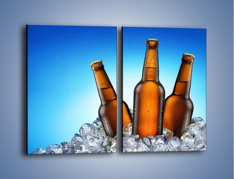 Obraz na płótnie – Szron na butelkach piwa – dwuczęściowy prostokątny pionowy JN075