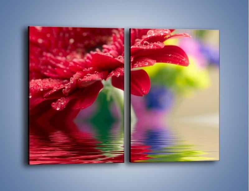 Obraz na płótnie – Bordowy kwiat odbity w wodzie – dwuczęściowy prostokątny pionowy K138