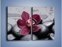 Obraz na płótnie – Bordowy storczyk i ciemne towarzystwo – dwuczęściowy prostokątny pionowy K156