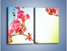 Obraz na płótnie – Akcent kwiatowy – dwuczęściowy prostokątny pionowy K268