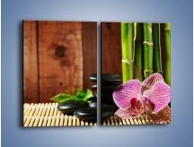 Obraz na płótnie – Bambus storczyk i kamienie – dwuczęściowy prostokątny pionowy K279