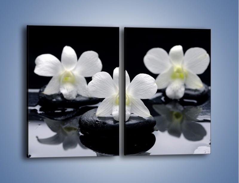Obraz na płótnie – Biel w kwiecie nocą – dwuczęściowy prostokątny pionowy K512