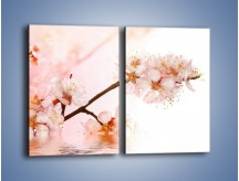 Obraz na płótnie – Blask kwiatów jabłoni – dwuczęściowy prostokątny pionowy K569