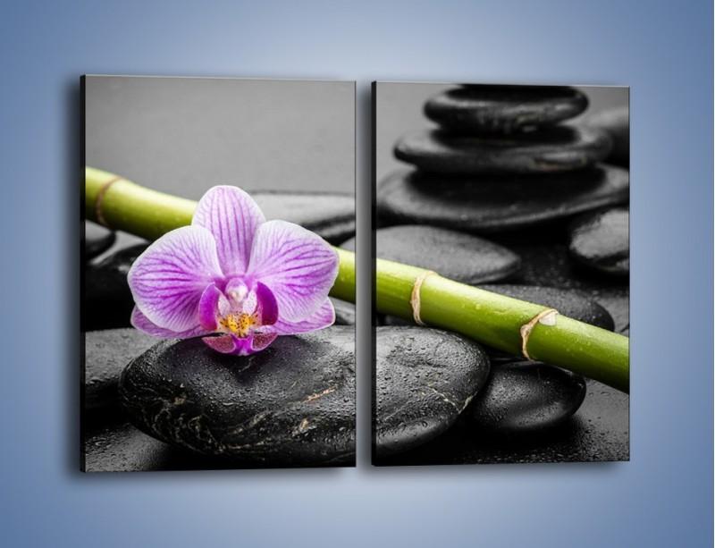 Obraz na płótnie – Bambus czy storczyk – dwuczęściowy prostokątny pionowy K686