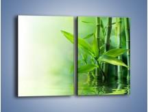 Obraz na płótnie – Bambusowe łodygi w roli głównej – dwuczęściowy prostokątny pionowy K704