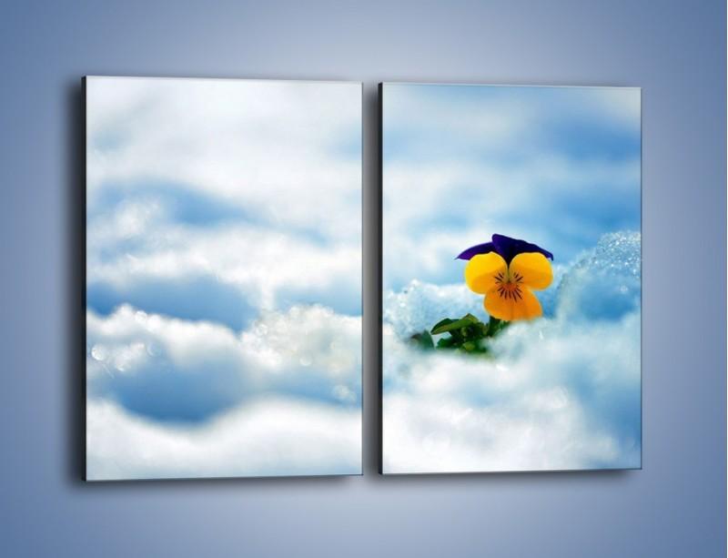 Obraz na płótnie – Bratek na śnieżnym niebie – dwuczęściowy prostokątny pionowy K744