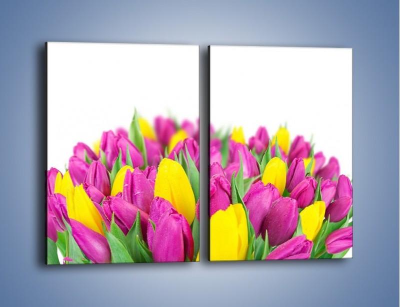 Obraz na płótnie – Bukiet fioletowo-żółtych tulipanów – dwuczęściowy prostokątny pionowy K778
