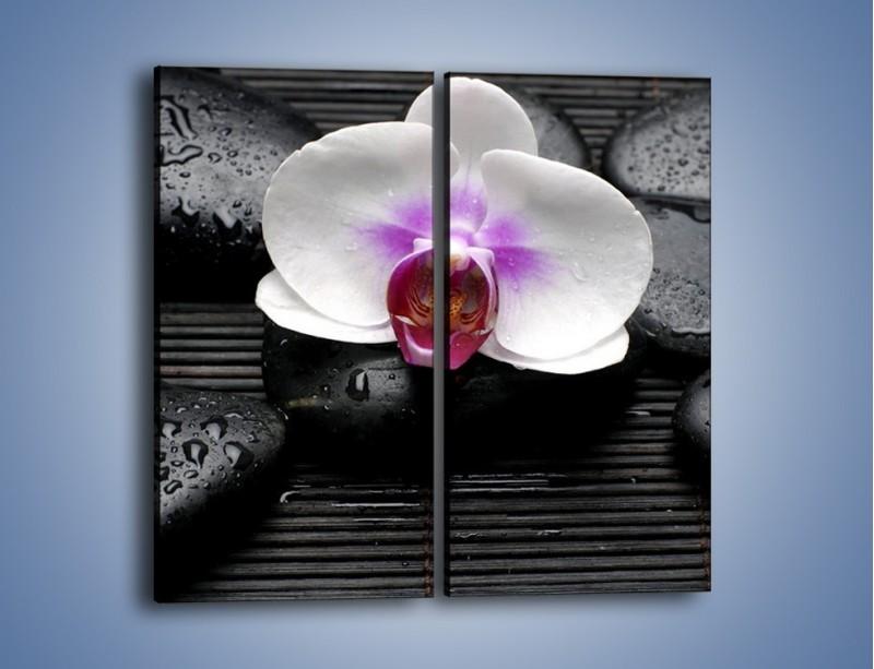 Obraz na płótnie – Biały kwiat na ciemnej macie – dwuczęściowy prostokątny pionowy K874