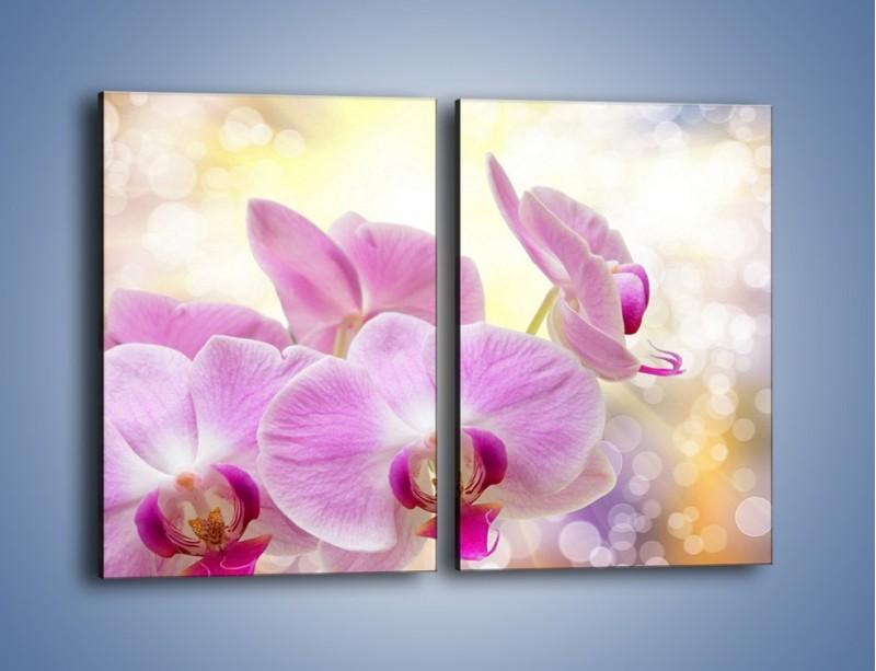 Obraz na płótnie – Lila kwiaty o poranku – dwuczęściowy prostokątny pionowy K976