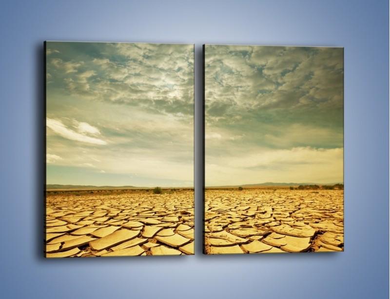 Obraz na płótnie – Ciemne chmury nad popękaną ziemią – dwuczęściowy prostokątny pionowy KN025