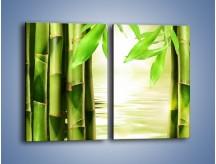 Obraz na płótnie – Bambusowe liście i łodygi – dwuczęściowy prostokątny pionowy KN027