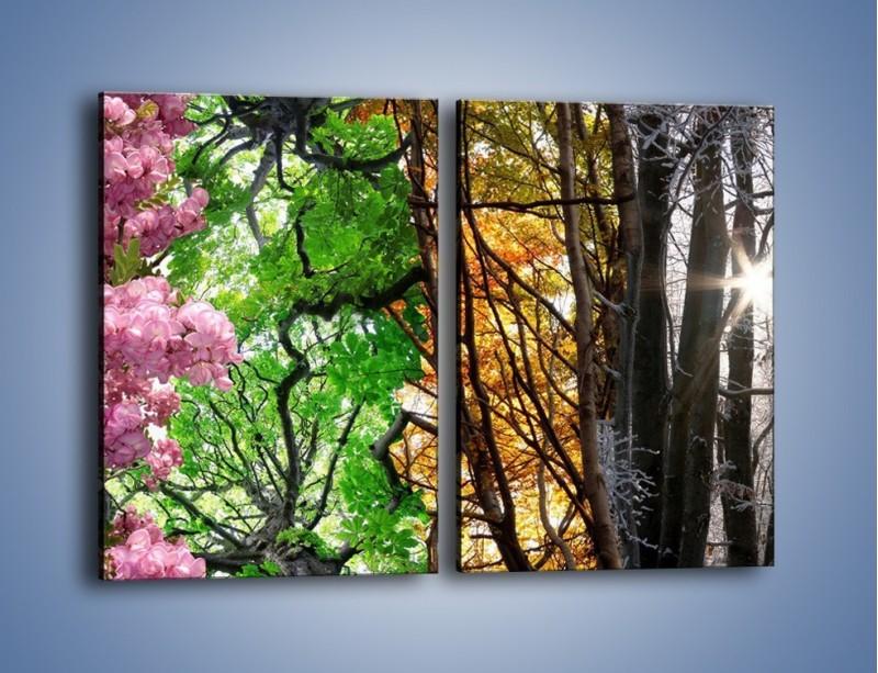 Obraz na płótnie – Drzewa w różnych kolorach – dwuczęściowy prostokątny pionowy KN037
