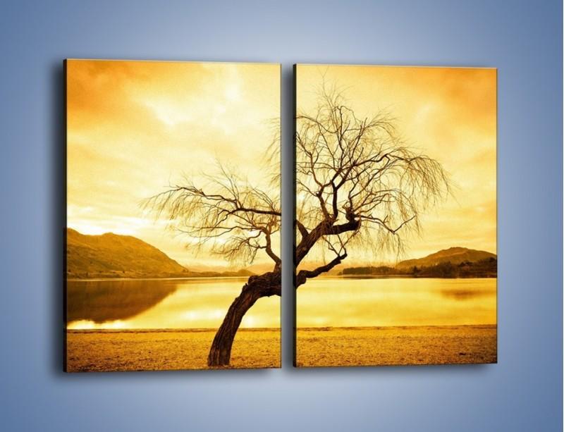 Obraz na płótnie – Pochylone drzewo w sepii – dwuczęściowy prostokątny pionowy KN1033
