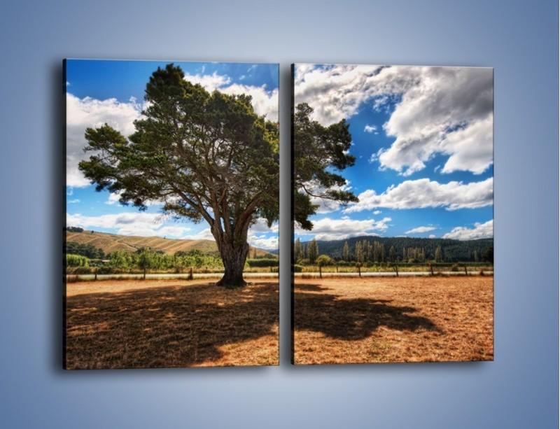 Obraz na płótnie – Cień pod rozłożystym drzewem – dwuczęściowy prostokątny pionowy KN1037