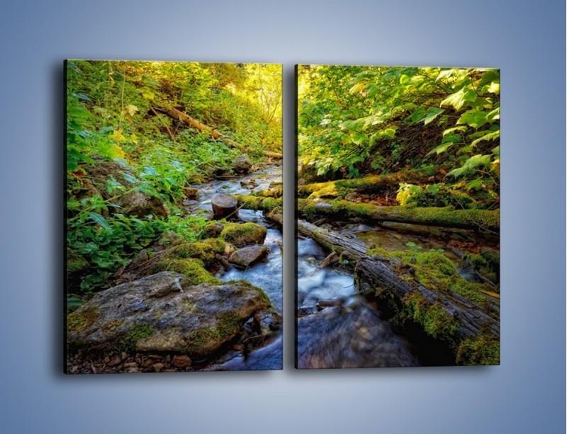 Obraz na płótnie – Drewno ścięte do wody – dwuczęściowy prostokątny pionowy KN1059