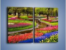 Obraz na płótnie – Aleje kolorowych tulipanów – dwuczęściowy prostokątny pionowy KN1079