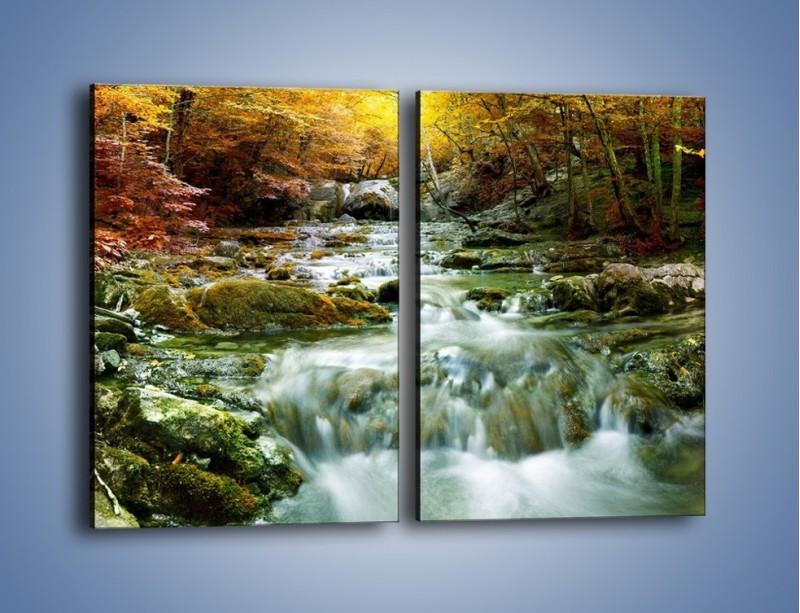 Obraz na płótnie – Wilgoć w lesie – dwuczęściowy prostokątny pionowy KN1118A