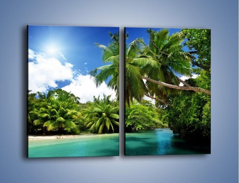 Obraz na płótnie – Rozłożone palmy i woda – dwuczęściowy prostokątny pionowy KN1168A