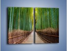 Obraz na płótnie – Bambusowy las – dwuczęściowy prostokątny pionowy KN1187A