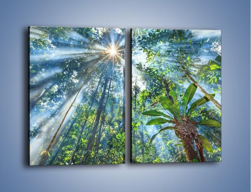 Obraz na płótnie – Dyzio marzyciel i drzewa – dwuczęściowy prostokątny pionowy KN1189A
