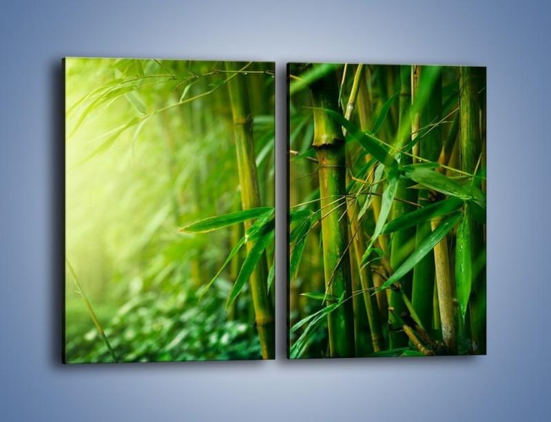 Obraz na płótnie – Bambus w roli głównej – dwuczęściowy prostokątny pionowy KN1202A