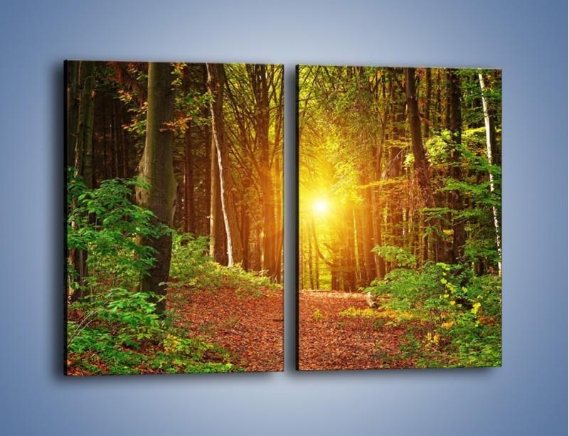 Obraz na płótnie – Polski krajobraz leśny – dwuczęściowy prostokątny pionowy KN1257A
